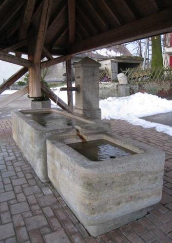 Fontaine de village, de style vaudois. Grès de la Molière, Suisse